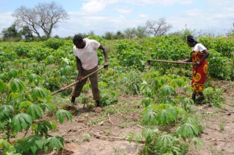 Protecting People's Land Rights And Stopping Land Grabbing in Tanzania