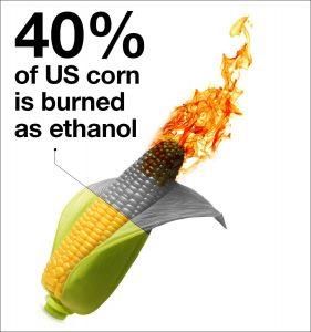 ethanolburn-hi-res-border