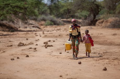 Developing Sustainable Solutions to Food Crisis in East Africa