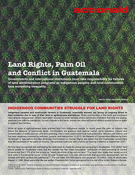 Land Rights, Palm Oil and Conflict in Guatemala