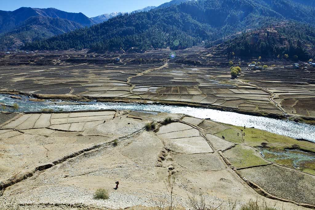 Fields in a valley in Nepal, with a glistening river running through them.