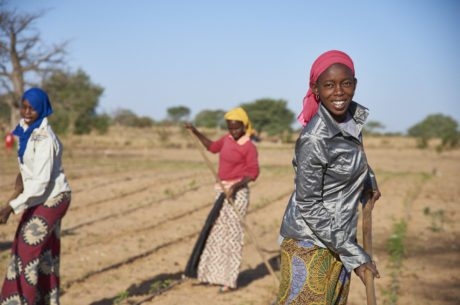 Improving Food Security for Farmers in Senegal