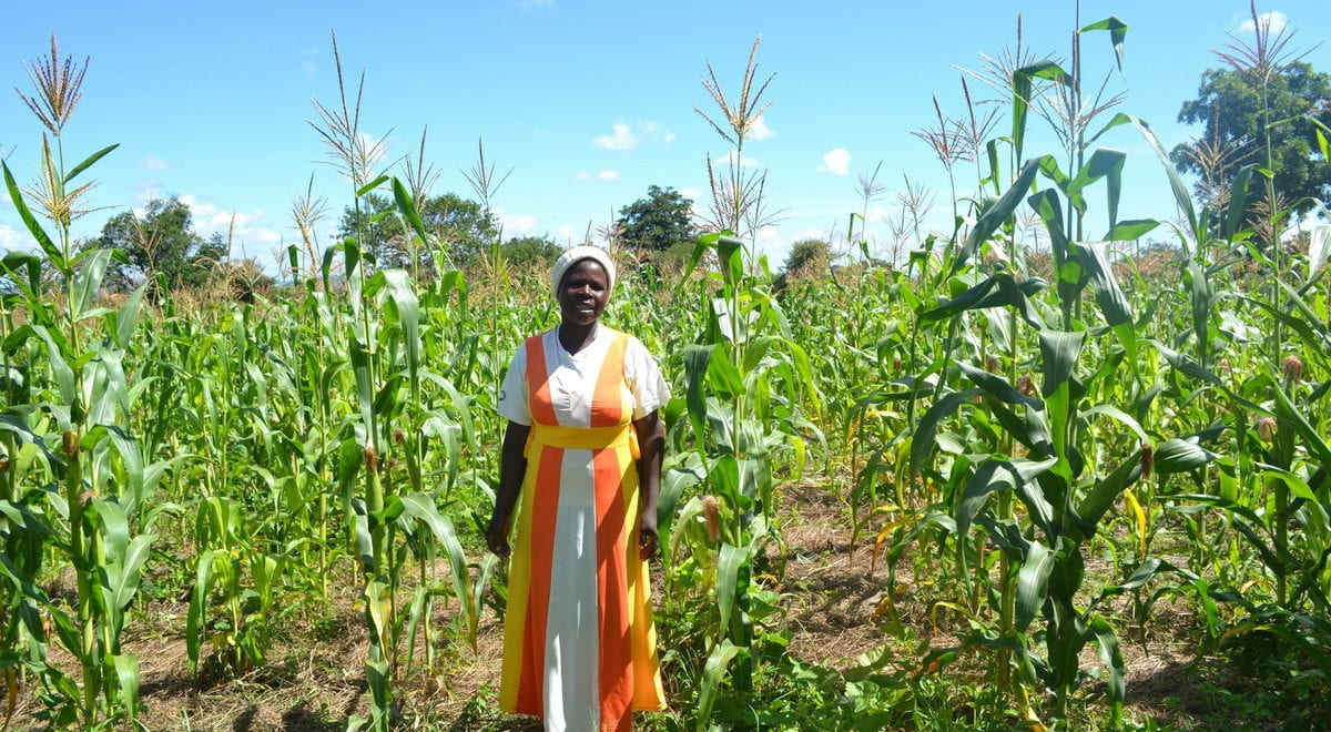Agriculture, First Female President, Tax Free Sanitary Pads