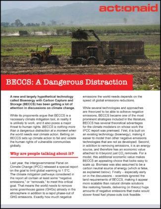 BECCS: A Dangerous Distraction
