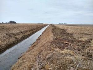 water draining off TIAA field
