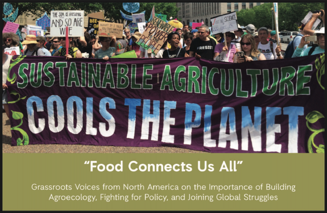 """""""Food Connects Us All"""" Grassroots Voices from North America on the Importance of Building Agroecology, Fighting for Policy, and Joining Global Struggles"""